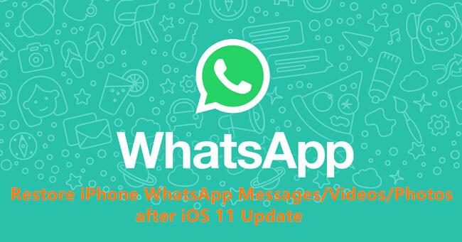 WhatsApp Images-Fotos wiederherstellen