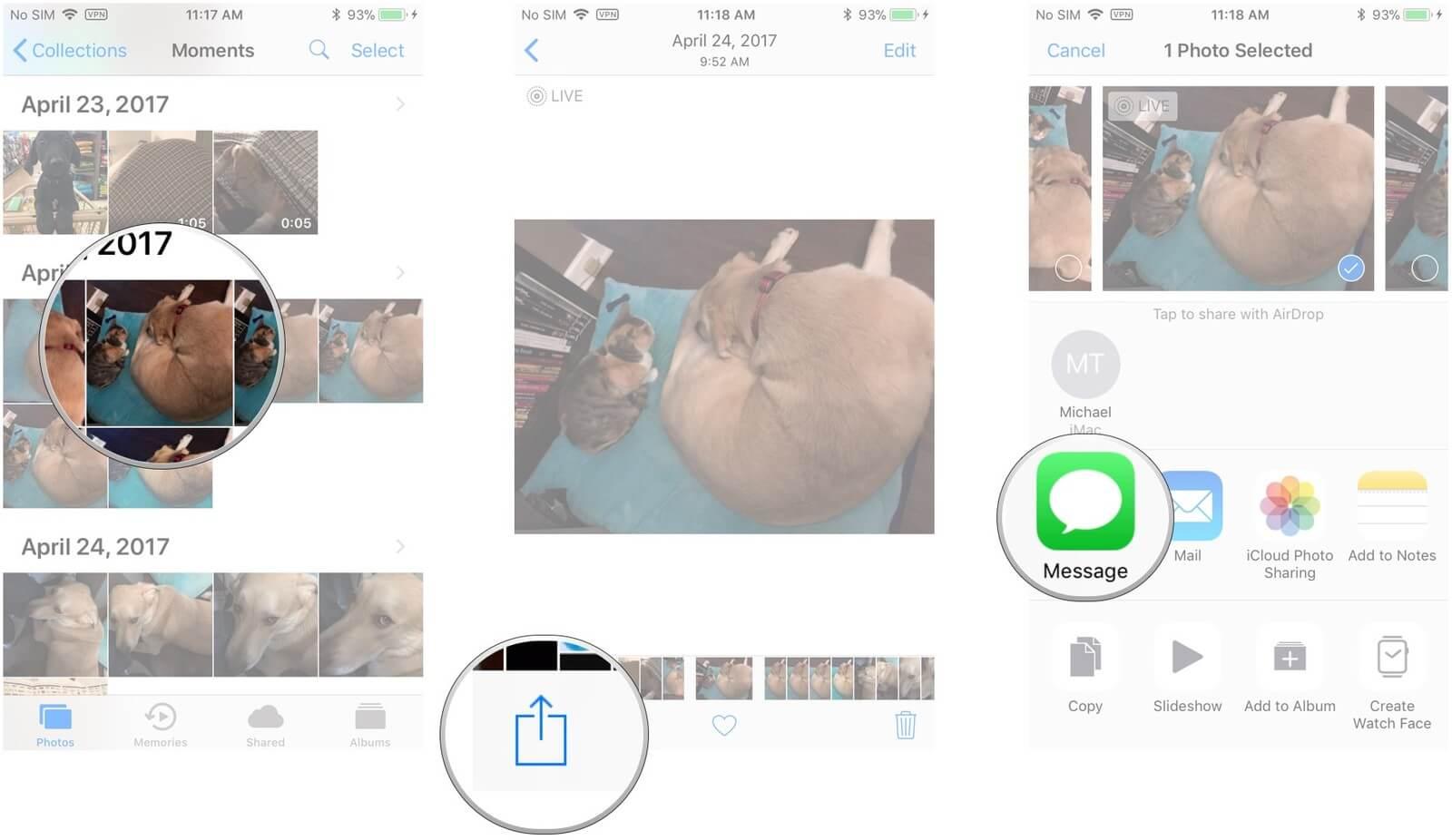 Share-Live-Fotos-zu-Social-Media-Plattformen