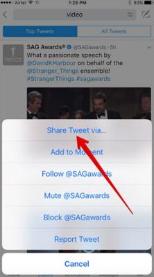 Video von Twitter-IOS-Geräten herunterladen
